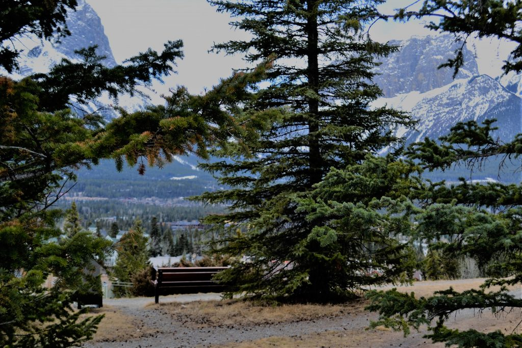 Beautiful, inspiring, idyllic Canmore, Alberta : sugar pine quilt shop - Adamdwight.com